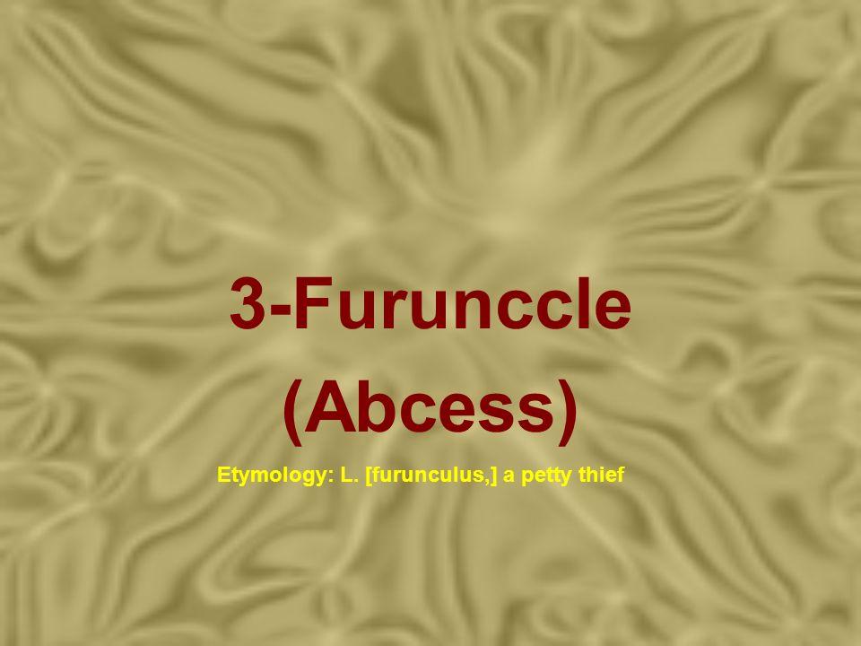 3-Furunccle (Abcess) Etymology: L. [furunculus,] a petty thief